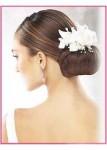 Bridal Hair Styles Pic