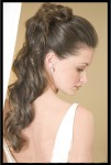 Bridal Hair Styles Picture
