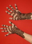 Mehndi Designs for Hands 2010