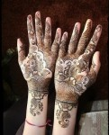 Pakistani Mehndi Designs Photo