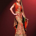 Bridal Wear Fish Lehnga Style