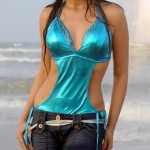 Shriya Saran Telugu Movie Swimsuit Photo