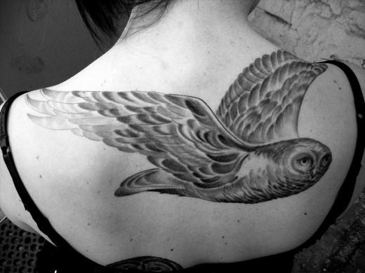 wwe the rock tattoo. tattoo wwe rock tattoo. wwe