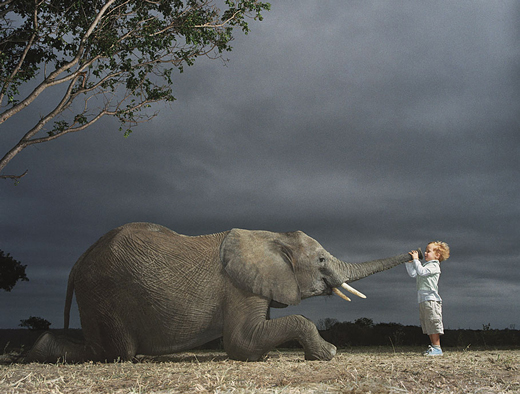Elephent and Childrn Action Photo