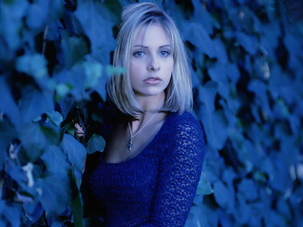 Sarah Michelle Gellar Hot Actress Sheclick Com