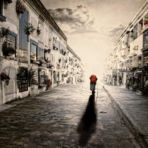 Beautiful Fine Art Photograph