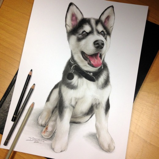 Puppy Pencil Drawing