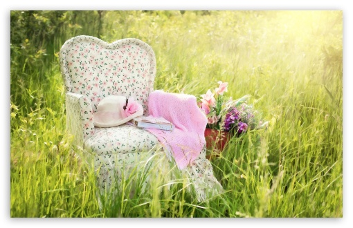 Chair in Field Wallpaper